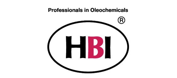Témoignage HBI sauvegarde externalisée
